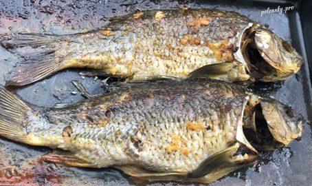 Запечена риба в духовці. Приготовлений короп без запаху болота.